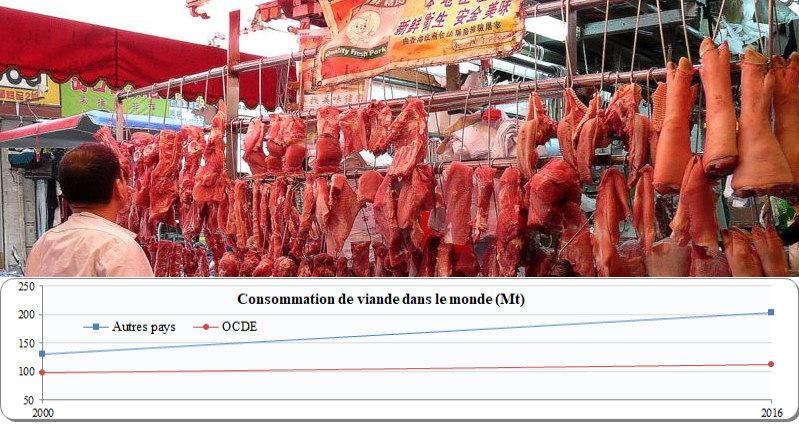 consommation de viande dans le monde