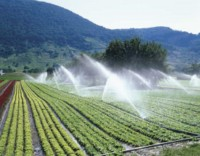 eau, agriculture, petits gestes, sauver la planète